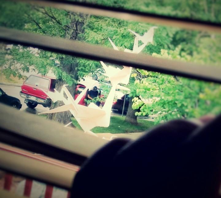 peeking-through-the-blinds
